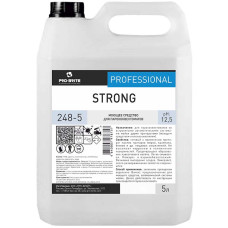 Моющее средство для пароконвектоматов Pro-Brite (Про-Брайт) Strong 248-5, 5 л