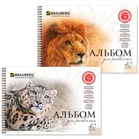 Альбом для рисования BRAUBERG «Благородные кошки», А4, 40 листов, гребень, обложка картон, 205×290 мм