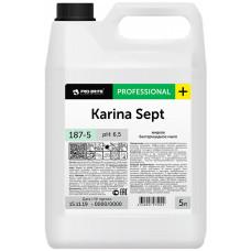 Жидкое бактерицидное мыло Pro-Brite (Про-Брайт) Karina Sept 187-5, 5 л